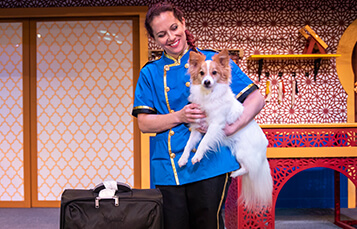 Critters Inn Charge animal show at Busch Gardens Tampa Bay